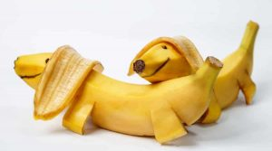 Dogs-made-from-banana-peels