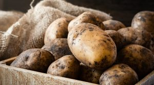 Box-of-Russet-Root-Vegetables